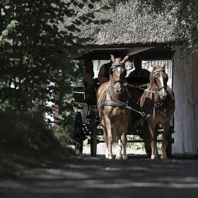 Carriage ride at The Funen Village
